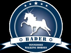 logo-d-b-new